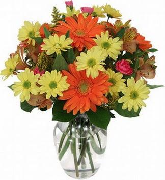 Malatya online çiçekçi , çiçek siparişi  vazo içerisinde karışık mevsim çiçekleri