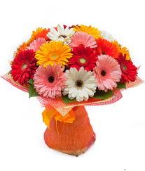 Renkli gerbera buketi  Malatya yurtiçi ve yurtdışı çiçek siparişi