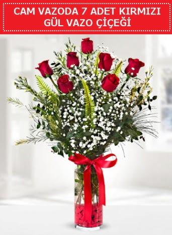 Cam vazoda 7 adet kırmızı gül çiçeği  Malatya hediye çiçek yolla