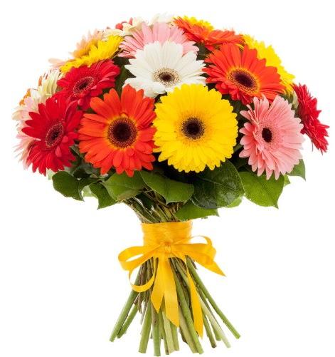 Gerbera demeti buketi  Malatya çiçekçiler