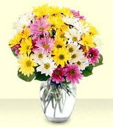 Malatya anneler günü çiçek yolla  mevsim çiçekleri mika yada cam vazo