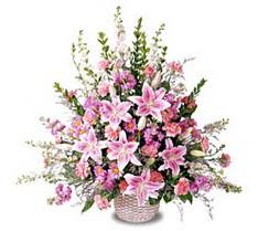 Malatya cicekciler , cicek siparisi  Tanzim mevsim çiçeklerinden çiçek modeli