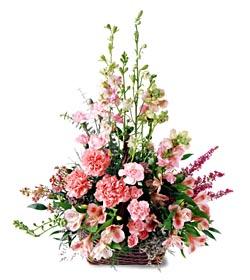 Malatya çiçek siparişi vermek  mevsim çiçeklerinden özel