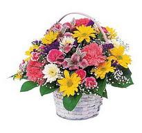 Malatya internetten çiçek siparişi  mevsim çiçekleri sepeti özel