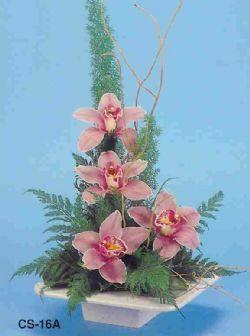 Malatya internetten çiçek satışı  vazoda 4 adet orkide