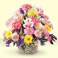 Malatya kaliteli taze ve ucuz çiçekler  sepet içerisinde gül ve mevsim