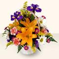 Malatya güvenli kaliteli hızlı çiçek  sepet içinde karisik çiçekler