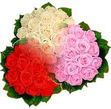 3 renkte gül seven sever   Malatya internetten çiçek siparişi