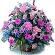 karisik mevsim kir çiçekleri  Malatya hediye çiçek yolla