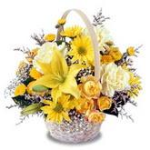 sadece sari çiçek sepeti   Malatya hediye çiçek yolla