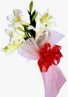 Malatya internetten çiçek siparişi  ince vazoda gerbera ve ayi