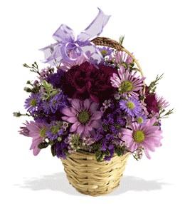 Malatya kaliteli taze ve ucuz çiçekler  sepet içerisinde krizantem çiçekleri