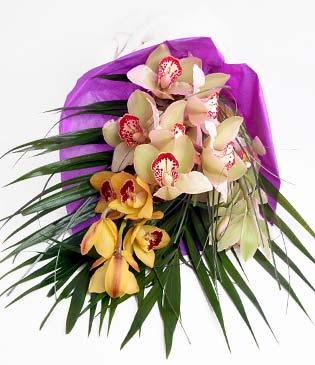 Malatya çiçek mağazası , çiçekçi adresleri  1 adet dal orkide buket halinde sunulmakta