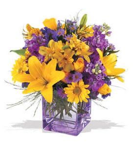 Malatya çiçek gönderme sitemiz güvenlidir  cam içerisinde kir çiçekleri demeti