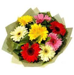 9 adet karisik gerbera demeti  Malatya çiçek gönderme sitemiz güvenlidir