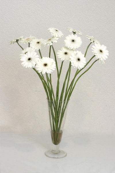 Malatya çiçek gönderme sitemiz güvenlidir  cam vazo içerisinde 17 adet sade gerbera