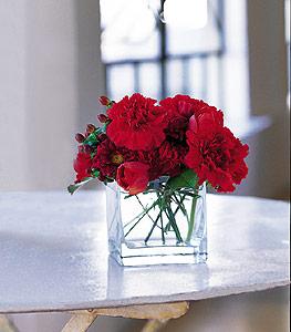 Malatya çiçek siparişi vermek  kirmizinin sihri cam içinde görsel sade çiçekler