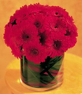 Malatya çiçek siparişi vermek  23 adet gerbera çiçegi sade ve sik cam içerisinde