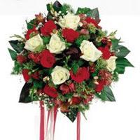 Malatya çiçek siparişi vermek  6 adet kirmizi 6 adet beyaz ve kir çiçekleri buket