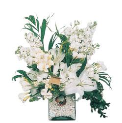Malatya anneler günü çiçek yolla  sadece beyazlardan olusmus mevsim cam yada mika tanzim