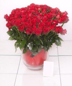 Malatya çiçek servisi , çiçekçi adresleri  101 adet kirmizi gül