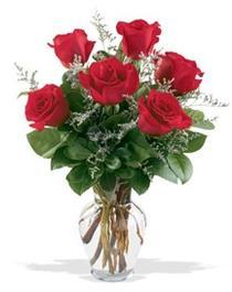 Malatya hediye çiçek yolla  7 adet kirmizi gül cam yada mika vazoda sevenlere