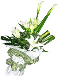Malatya çiçek gönderme  3 dal kazablanka çiçegi ve yesillikler