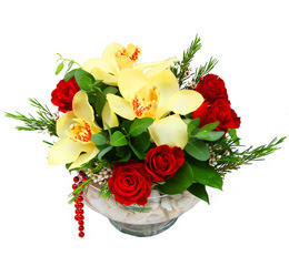 Malatya çiçek siparişi sitesi  1 kandil kazablanka ve 5 adet kirmizi gül