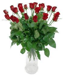 Malatya internetten çiçek satışı  11 adet kimizi gülün ihtisami cam yada mika vazo modeli