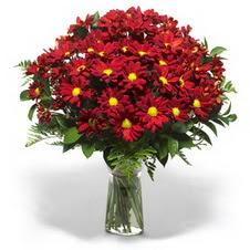 Malatya çiçekçi mağazası  Kir çiçekleri cam yada mika vazo içinde