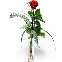 Malatya güvenli kaliteli hızlı çiçek  Sana deger veriyorum bir adet gül cam yada mika vazoda