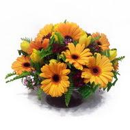 gerbera ve kir çiçek masa aranjmani  Malatya hediye sevgilime hediye çiçek