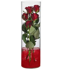 cam içerisinde 7 adet kirmizi gül  Malatya 14 şubat sevgililer günü çiçek