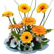camda gerbera ve mis kokulu kir çiçekleri  Malatya internetten çiçek satışı