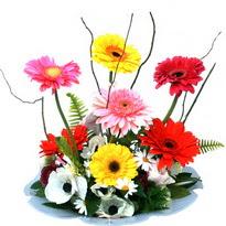 Malatya online çiçek gönderme sipariş  camda gerbera ve mis kokulu kir çiçekleri