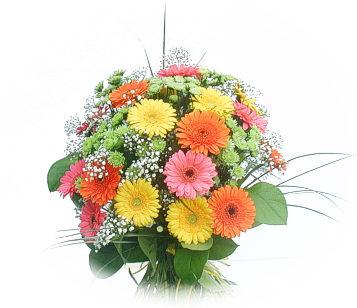 13 adet gerbera çiçegi buketi  Malatya çiçek online çiçek siparişi