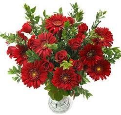 5 adet kirmizi gül 5 adet gerbera aranjmani  Malatya online çiçek gönderme sipariş