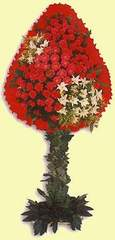 Malatya çiçek siparişi sitesi  dügün açilis çiçekleri  Malatya çiçek yolla , çiçek gönder , çiçekçi