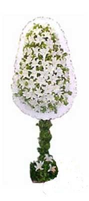 Malatya cicekciler , cicek siparisi  nikah , dügün , açilis çiçek modeli  Malatya çiçek online çiçek siparişi