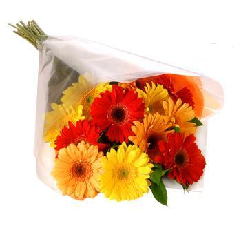 Karisik renklerde gerbera buketi  Malatya çiçek mağazası , çiçekçi adresleri