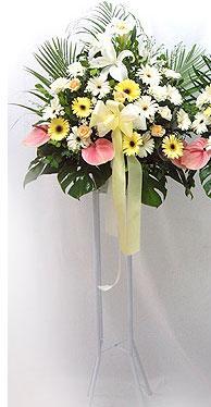 Malatya çiçek online çiçek siparişi   perförje çiçegi dügün çiçekleri