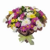 Malatya internetten çiçek satışı  Mevsim kir çiçegi demeti