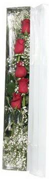 Malatya cicekciler , cicek siparisi   5 adet gülden kutu güller