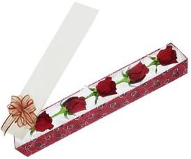 Malatya uluslararası çiçek gönderme  kutu içerisinde 5 adet kirmizi gül