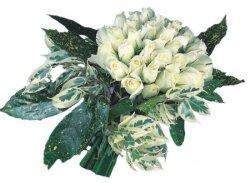 Malatya anneler günü çiçek yolla  9 Beyaz gül Özel kisiler için