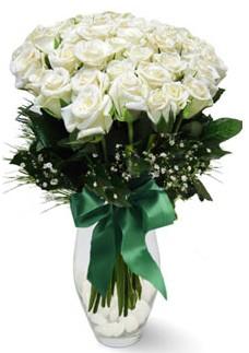 19 adet essiz kalitede beyaz gül  Malatya 14 şubat sevgililer günü çiçek