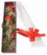 kutu içinde 5 adet kirmizi gül  Malatya anneler günü çiçek yolla