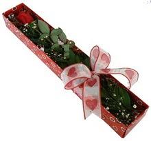 Tek kirmizi gül kutu içerisinde  Malatya çiçek gönderme