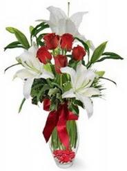 Malatya hediye sevgilime hediye çiçek  5 adet kirmizi gül ve 3 kandil kazablanka
