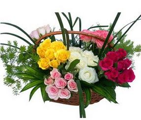 Malatya çiçek siparişi vermek  35 adet rengarenk güllerden sepet tanzimi